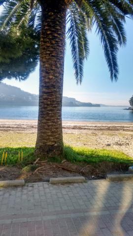 Praia da Madalena. Cabanas