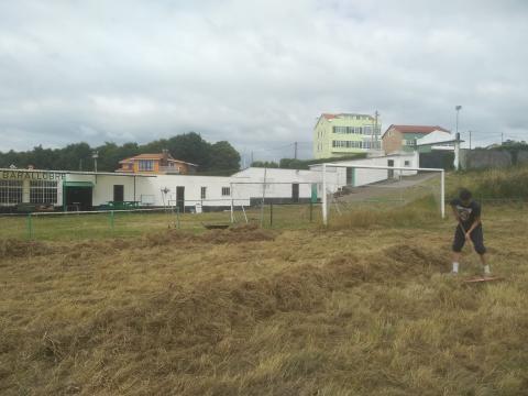 A xunta directiva quere recoller a herba antes de que chova