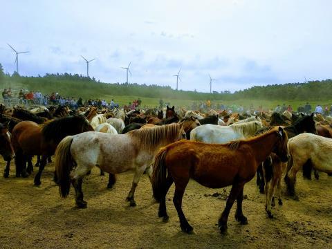 Artefactos eólicos na Serra da Capelada. Cedeira
