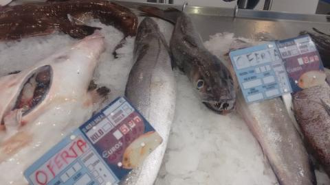 Pescada da Peixería Marina de Maniños