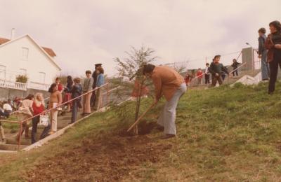 Xosé María Rivera Arnoso plantando unha árbore no colexio O Ramo de Barallobre