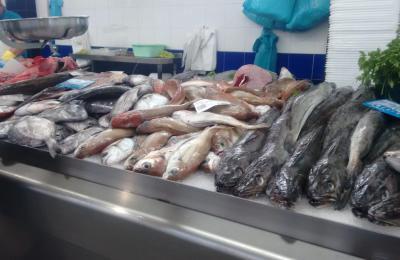 Pescada e outros peixes no Mercado da Magdalena en Ferrol