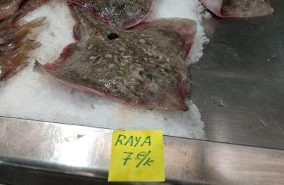 Raia no mercado da Praza de Lugo da Coruña